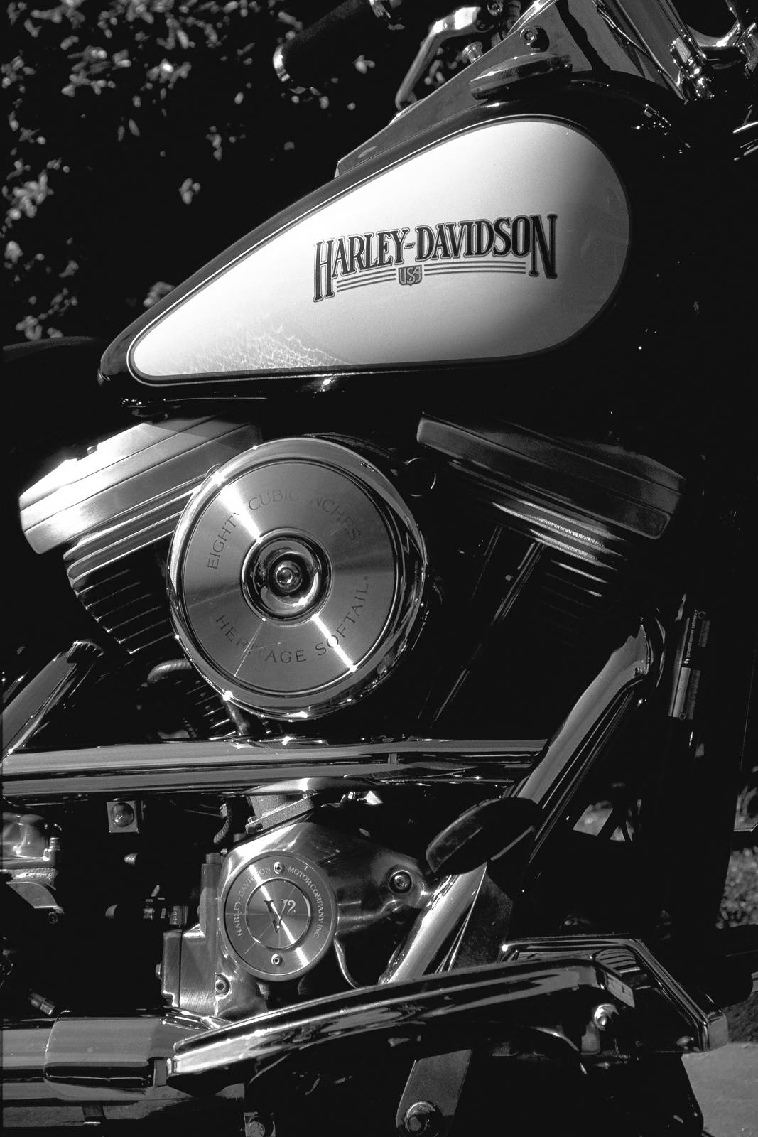 Harley Davidson, Heritage softail